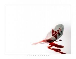 pluma+y+sangre